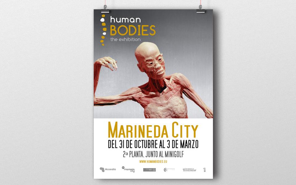 Human Bodies